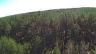 Stock Video Footage of Rural landscape with    wood . Aerial