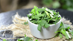 Fresh coriander (loopable) Stock Footage