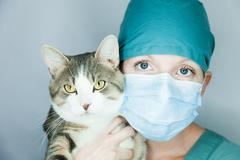 I do care of your animal ! - stock photo