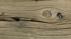 Wood Plank Texture Background - 29,97FPS NTSC Stock Footage