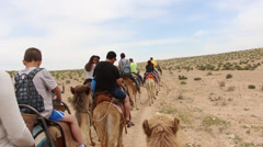 Shaky handheld riding camels rider POV Stock Footage