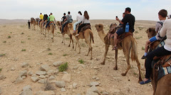 Shaky riding on a camel Stock Footage