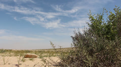 Desert background Stock Footage