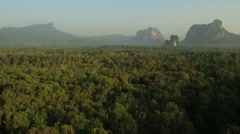 Aerial View: Mangrove forest in Krabi province, Thailand. - stock footage