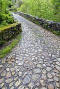 Roman bridge input, Poo de Cabrales. Stock Photos