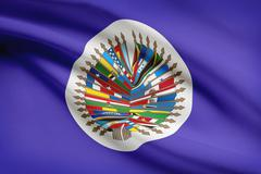 organization of american states flag blowing in the wind. part of a series. - stock illustration