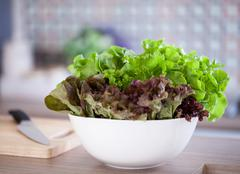 Stock Photo of Green Salad