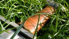 Medieval Sword close up - camera slide Stock Footage