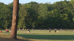 People enjoying nice weather in a city park Stock Footage