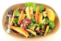 Arugula and radicchio gourmet salad. Stock Photos