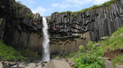 Svartifoss, Waterfall in Iceland Stock Footage