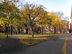 Harvard Old Yard Kuvituskuvat