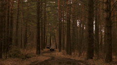 ATVs in the forest Stock Footage