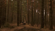 Stock Video Footage of ATVs in the forest