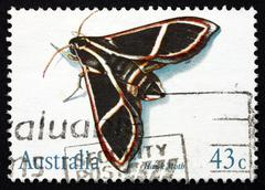 Stock Photo of Postage stamp Australia 1991 Hawk Moth, Insect