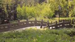 Bridge over the river in Сhinese Yuyuan Garden Stock Footage