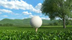 Golf: Hole in One Stock Footage
