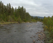View downstream creek streaming in arctic landscape with coniferous forest Stock Footage
