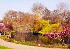 London - St James Park Gardens - Spring - stock photo