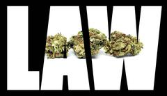 marijuana law - stock illustration