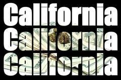 marijuana california - stock illustration