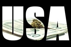 Marijuana usa Stock Illustration