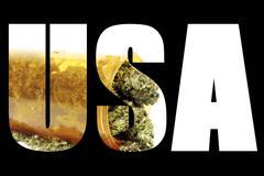 marijuana usa - stock illustration