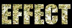 marijuana effect - stock illustration