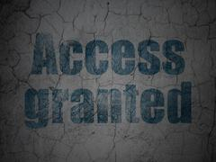 Privacy concept: Access Granted on grunge wall background - stock illustration