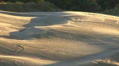Windswept Dunes Stock Footage