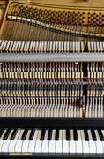 inside the piano: string, pins, keys - stock photo