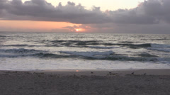 First Sun on a Florida Beach Stock Footage