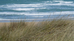 Pan over Marram Grass with ocean in background Stock Footage
