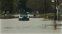 Car flood. River flooding. Stock Footage