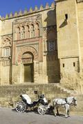 horse carriage in cordoba. andalusia, spain. - stock photo