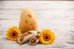 apiary products - stock photo
