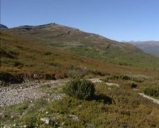 RONDANE NORWAY: pan high mountain plateau, heather and lichen covered tundra Stock Footage
