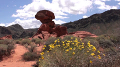 Nevada, Valley of Fire Stock Footage