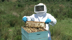 Producer extractin honey - bee hive Stock Footage