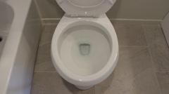 Flushing Toilet Stock Footage
