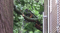 Severe thunderstorm damage in Toronto after major storm Stock Footage