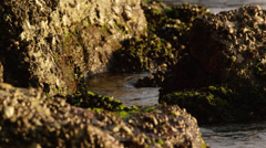 Static shot of dark water lapping against jagged rocks. Stock Footage