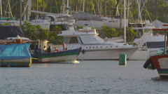 Static shot of a crusing boat amidst a variety of larger craft. Stock Footage