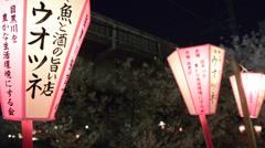 Hanami cherry blossom viewing at Meguro River, Tokyo, Japan Stock Footage