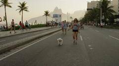 Slow motion tracking shot of a blond girl walking her dog down Avenida Vieira Stock Footage