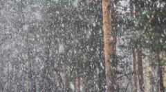 Last snow in city. Stock Footage