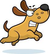 Angry dog Stock Illustration