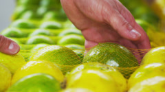 Close-up shot of green mandarin oranges in a market in Rio de Janeiro, Brazil Stock Footage