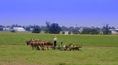 Amish man working at traditional farm in Intercourse Pennsylvania in Amish - stock footage