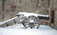 Cannon in winter in Hungary Stock Photos